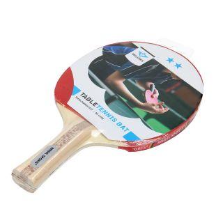 Table tennis Bat 2 Star