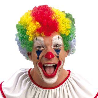 Multi Color Clown Wig Adult