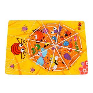 Lacing Puzzle Spider in Web